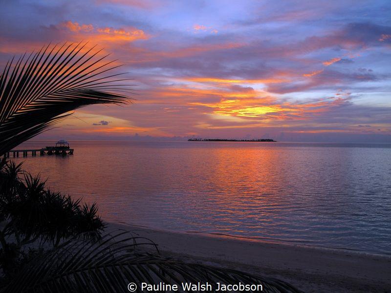 Sunset, Wakatobi, Indonesia by Pauline Walsh Jacobson