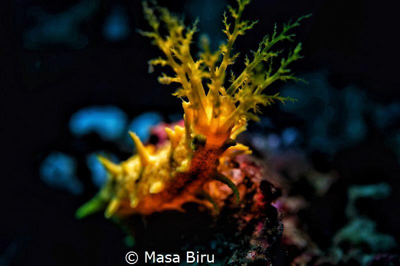 grue of the sea   by Masa Biru