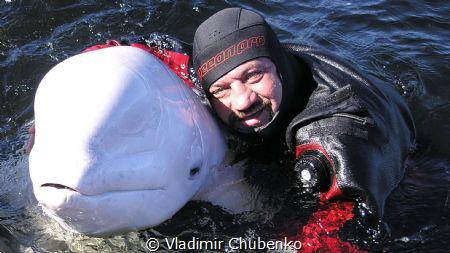 friends by Vladimir Chubenko