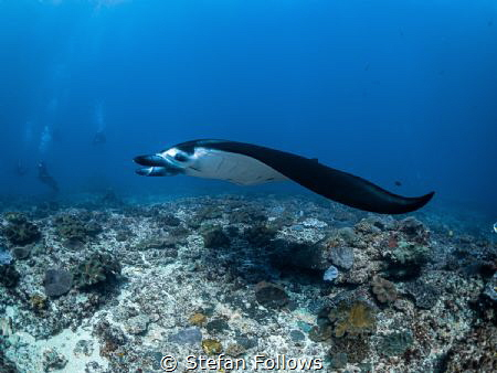 Low Rider