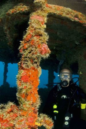 Dive buddy at 90 feet depth on Thunderbolt wreck, Maratho... by David Heidemann