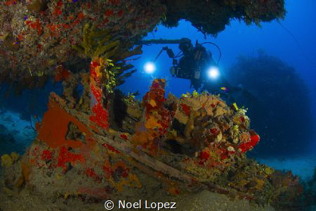 small wreck, and a diver, nikon D800E ,tokina lens 10-17m... by Noel Lopez