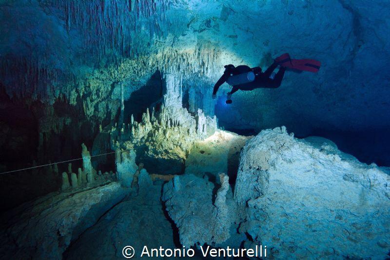 cave diving in  cenote Zacil Ha_Tulum_ 2021 (Canon 14mm,... by Antonio Venturelli