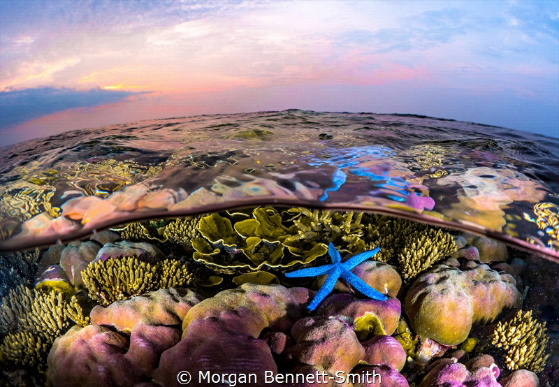 Sunset over a reef near Kimbe Island by Morgan Bennett-Smith