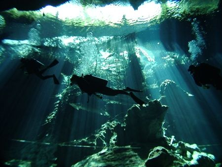 From the Chacmol Cenote (Cave). Dome port used. by Kenn Bolbjerg