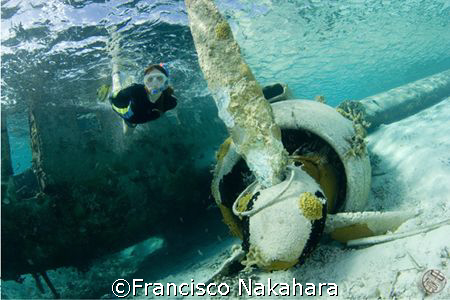 Flying under the sea... by Francisco Nakahara