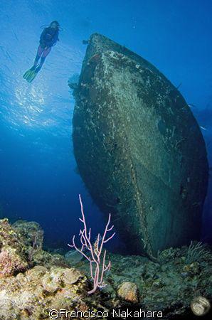 Diver & wreck a perfect combination by Francisco Nakahara