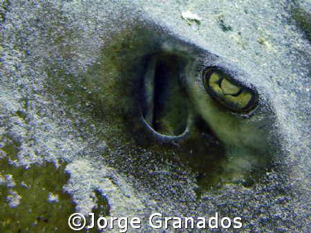 Tomada en Los Roques by Jorge Granados