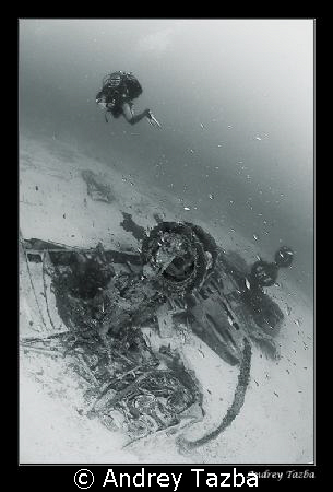 Bristol Beaufighter by Andrey Tazba