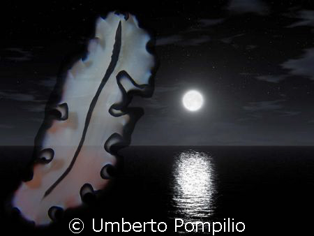 In the night by Umberto Pompilio
