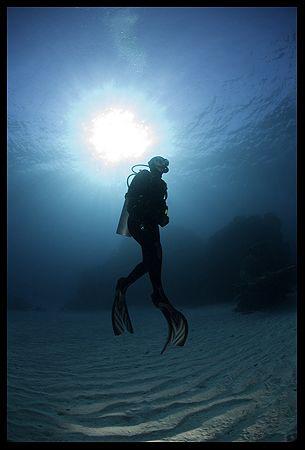 diver silhouette, canon 5D, Wadi Lahmi 2007 by Dejan Sarman