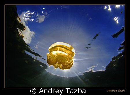 Solar eclipse  by Andrey Tazba