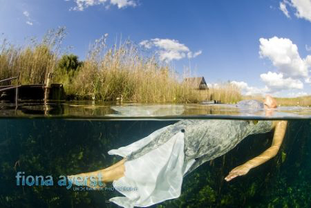 I found a mermaid in a fresh water spring....... by Fiona Ayerst