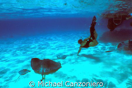 On some days, there are actually more rays than divers at... by Michael Canzoniero