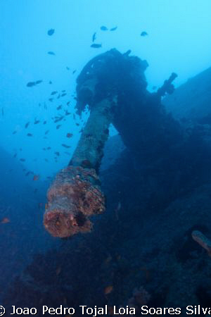 AA gun at the stern of the Thistlegorm. Shot using a Cano... by Joao Pedro Tojal Loia Soares Silva