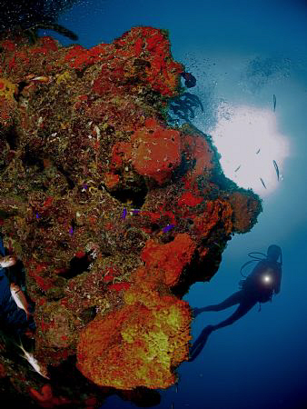 Another one of a scubadiver... by Juan Torres