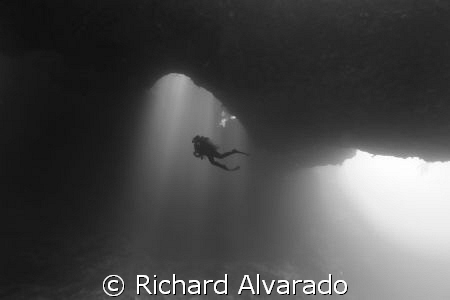"""Blue Holes"" in Koror, Palau. by Richard Alvarado"