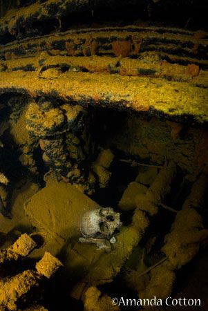 Human Skull.  Human remains lay deep inside the Heian Mar... by Amanda Cotton