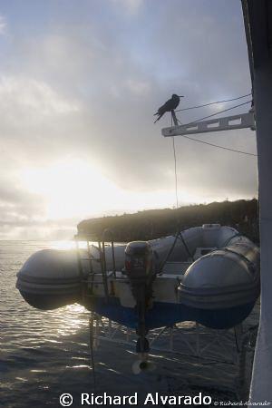Sunrise in the Galapagos by Richard Alvarado