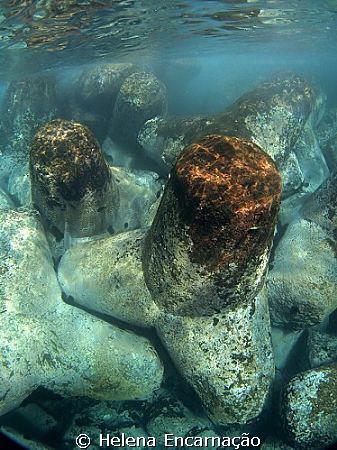 Artificial reef- break-water. by Helena Encarnação