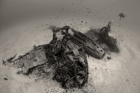 Bristol-Beaufighter, depth 40m by Aleksandr Marinicev