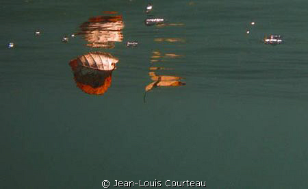 """Red, sinking feeling"" by Jean-Louis Courteau"