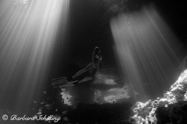 Thunderball Caves swimming thru the Sunlight by Barbara Schilling