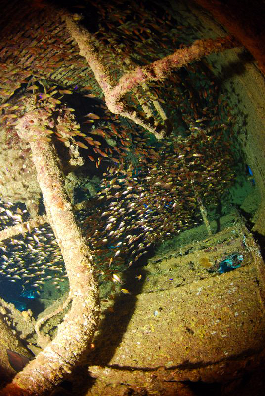 Inside the wreck! by Andy Kutsch