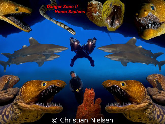 Dangerzone !!!
