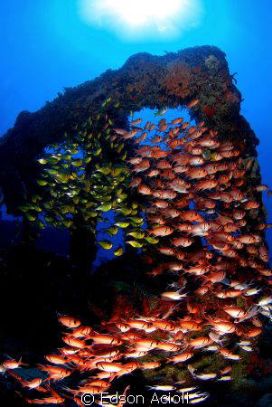 Photo taken in the wreck Pirapama. Recife-PE. by Edson Acioli
