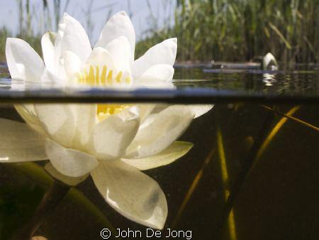 I made some pipes on my underwaterhousing to make half/ha... by John De Jong