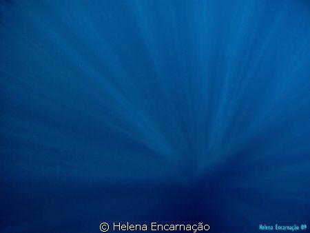 Vertigo. by Helena Encarnação