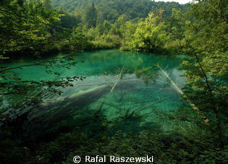 just,pure water by Rafal Raszewski