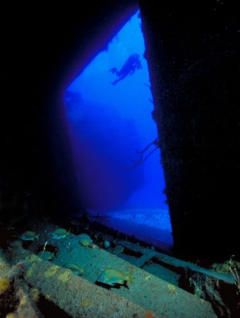 Theo Wreck interior, Bahamas (Nikon F4, 18mm/3.5, Aquatic... by Andrew Dawson