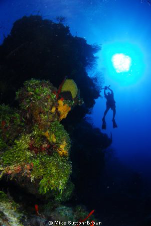 Diver on the wall in Grand Cayman by Mike Sutton-Brown