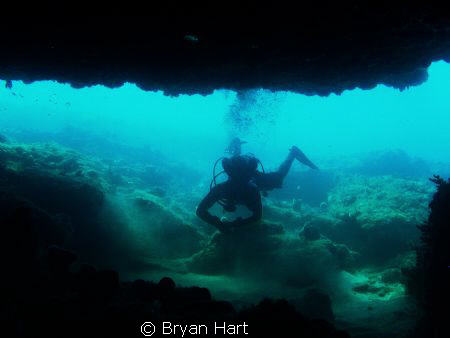 in 10m of water off Durban - the Caves is one of the only... by Bryan Hart