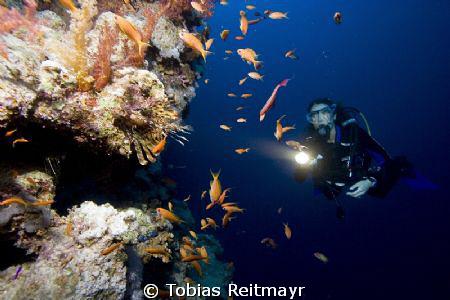 Christine and lionfish, outside Blue Hole, Dahab. Canon E... by Tobias Reitmayr