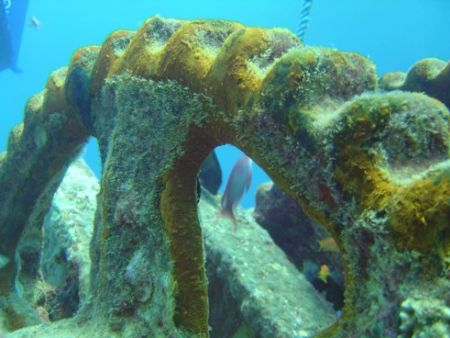 Anchor Winch on Bow SS Thistlegorm   by Harvey Page