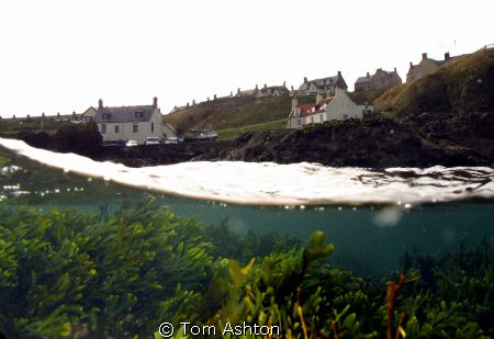 A grey winters day in East Scotland by Tom Ashton