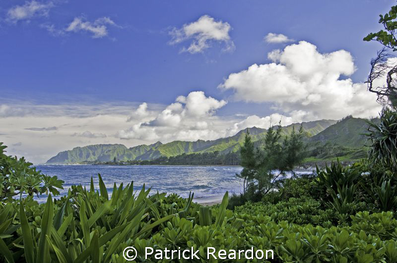 Idyllic afternoon.  North Shore, Oahu. by Patrick Reardon
