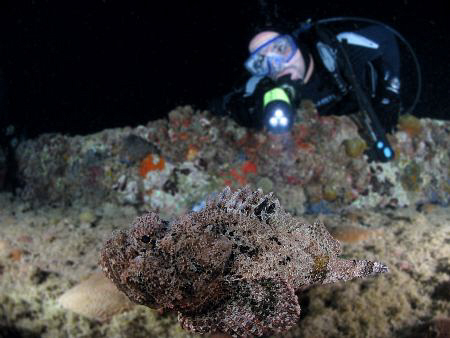 Used Photoshop to sharpen the Scorpionfish and blurring t... by Juan Torres