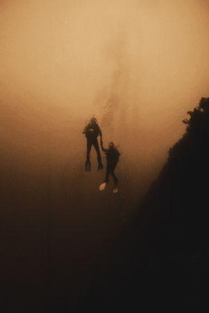 """A helping hand"" Red sea 2004 Sea&sea NX100 Nikon F100... by Gavin Skipp"