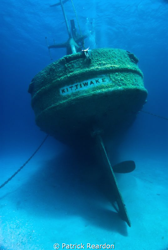 The Kittiwake, Grand Cayman. by Patrick Reardon
