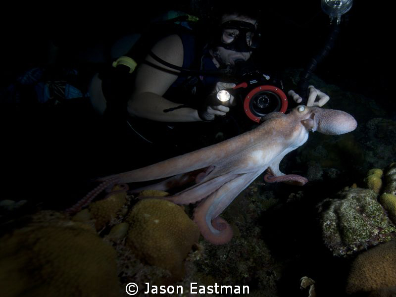 Enjoying the Best Night Life in the Cayman Islands... by Jason Eastman