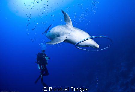 Tu prenais du plaisir A faire des ronds dans l'eau... ;=) by Bonduel Tanguy