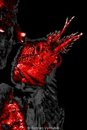 Hell by Roman Vyroubal