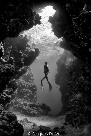 Record Italian freediver Linda Paganelli, ascending in fr... by Jacques De Vos