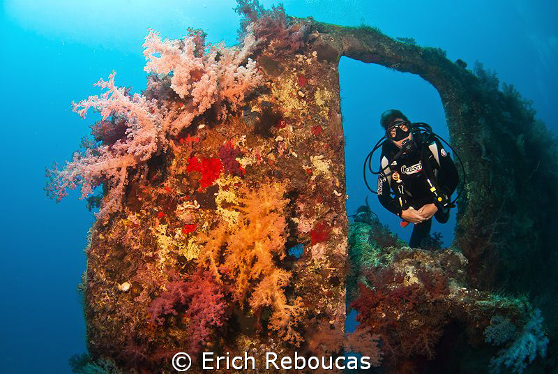 Swimming through the rudder of the 135 year-old SS Dunraven by Erich Reboucas