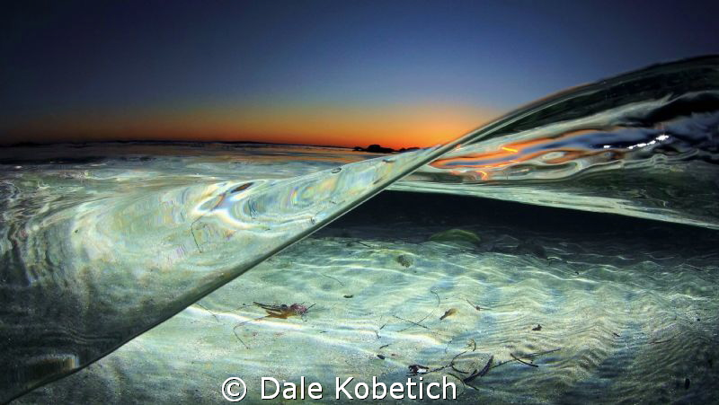 After sunset in tide pool Laguna Beach by Dale Kobetich