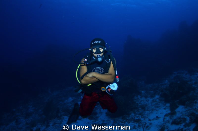 During our dive in Mexico our dive master literally fell ... by Dave Wasserman